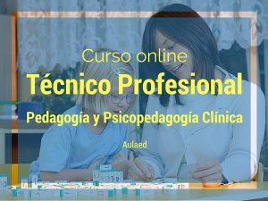 Curso Técnico Profesional en Pedagogía y Psicopedagogía clínica