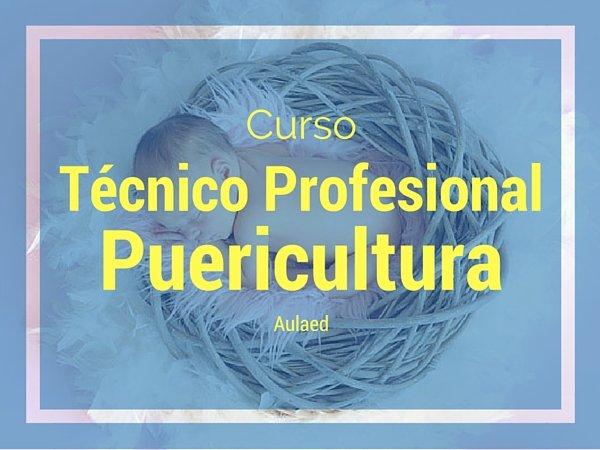 Curso Técnico Profesional en Puericultura