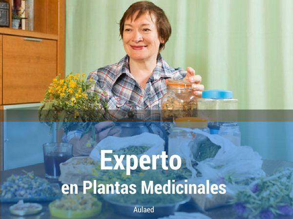 Curso Experto en Plantas Medicinales