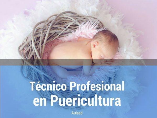 Curso Tecnico Profesional en Puericultura